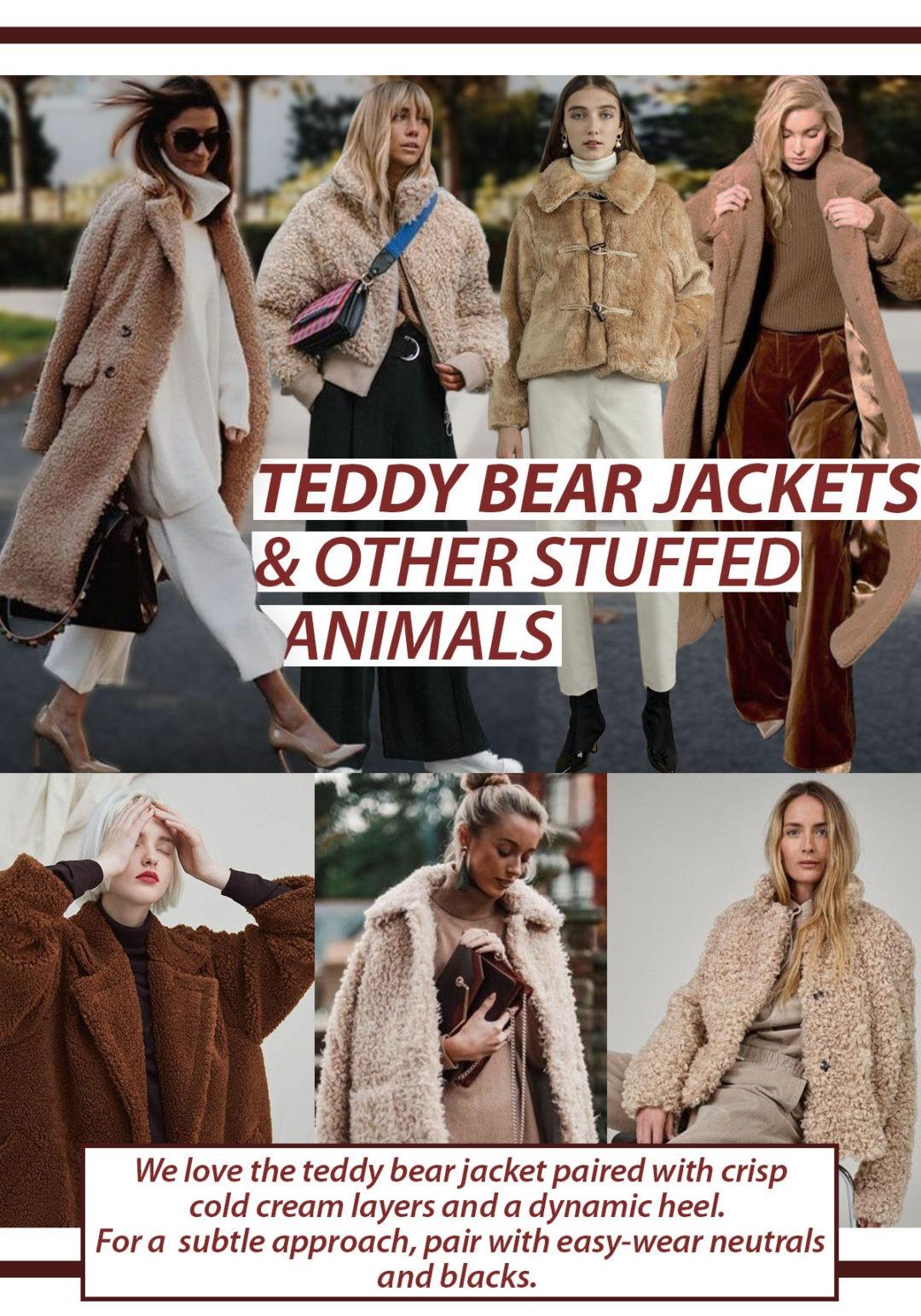 teddy bear jackets warm cozy statement bomber